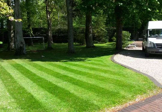 Lawn Care Ayrshire